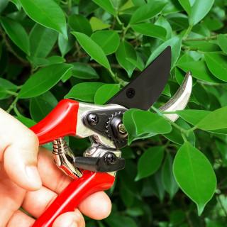 Garden pruner standard